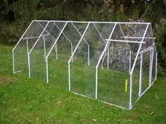pvc chicken coop | Chicken coop PVC and chicken wire | Urban Farm