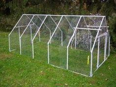 pvc chicken coop | Chicken coop PVC and chicken wire | Urban Farm