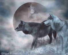 ~Like the dawn, you touch with blushes, ~Yonder mountain's gloomy spire, ~And through your heart there pulses, ~Breath of spring and summer's fire...~♥ ~Goethe~ *Artist: The Art Of Carol Cavalaris* see more wonder wolf art @  https://www.facebook.com/pages/Howling-for-Wolves-with-Native-drums/235205583229761