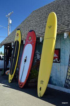 Renting boards in Ocean Shores!! I love ocean shores...