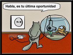 #:-o Sonríe sin parar con l lawliet memes, gifs noche, memes minions español, memes graciosos ebola y descargar gif animados de amor para celular ➧➛ http://www.diverint.com/memes-caras-chistosas-explica/