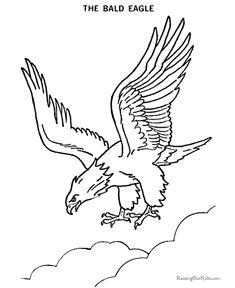 Bald Eagle Drawings - American Patriotic Symbol -002