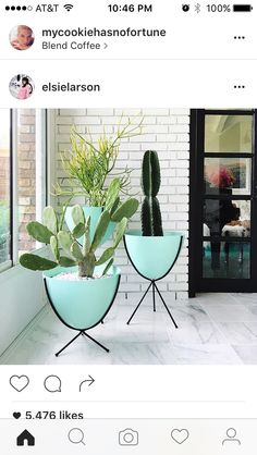Charmant Retro Bullet Planters With Cactus!