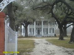 This is my dream home, and if it looks familiar its because its Forest Gump's House! In Green Bo ALABAMA. Woman Painting, House Painting, Romantic Movie Quotes, Colonial Style Homes, Forrest Gump, Famous Movies, Indie Movies, Filming Locations, Old Houses