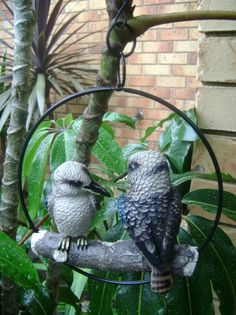 Swinging Kookaburras Outdoor Garden Patio Hanging Display