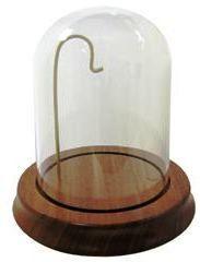 Campana de vidrio