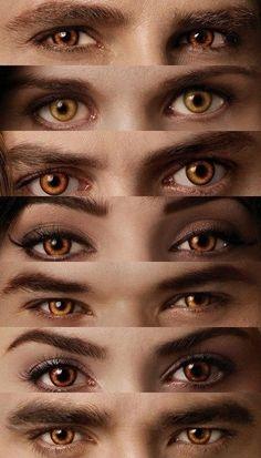 Honey Eyes From Twilight Twilight Poster, Twilight Saga Quotes, Twilight Saga Series, Twilight Edward, Twilight Book, Twilight Cast, Edward Bella, Carlisle, Twilight Scenes