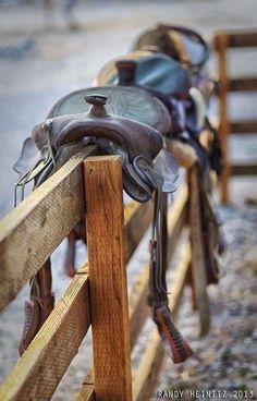 #sattel #pferde