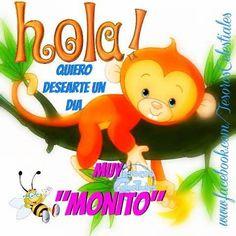 """Hola! Quiero desearte un día Muy """"Monito"""""""
