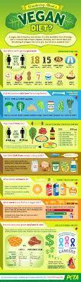 Infographic vegan diet