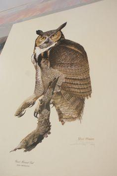 Atlanta EFT Large Print. The Great Horned Owl