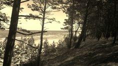 Wybrzeże bałtyckie