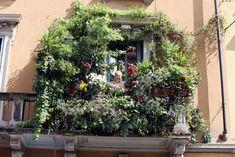 Hidden gems in the city of Milano. Balcony Flowers, Balcony Plants, Outdoor Balcony, Rooftop Garden, Balcony Ideas, Planter Bench, Planters, Next Garden, Picnic Spot