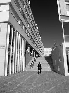 Quo Vadis 02   by Nenad Suznjevic TIZ_Zadar Nikola basic Opera House, Louvre, Building, Travel, Viajes, Buildings, Destinations, Traveling, Trips