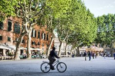 Piazza Napoleone- Lucca, Italy | Flickr - Photo Sharing!