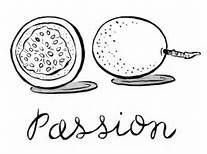 passion fruit coloring sheets - Yahoo Image Search Results