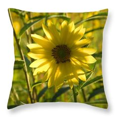 http://fineartamerica.com/products/sunflower-glow-nancy-spirakus-throw-pillow.html
