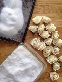 The Art of Silica Gel Silica Gel. How it creates such beautiful dried roses. I am a pressed flower Pressed Roses, Pressed Flower Art, Silica Gel Uses, Drying Roses, How To Preserve Flowers, Preserving Flowers, Forever Flowers, Diy Resin Crafts, Flower Plates