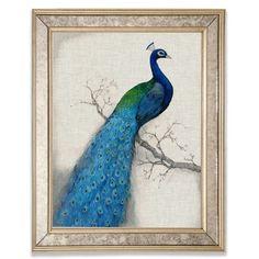 2e69dc97f2b6 'Peacock I' Framed Graphic Art Print on Wood Canora Grey Peacock Theme,  Peacock