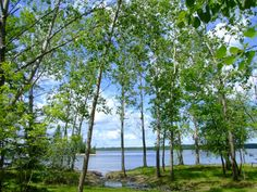 Otter Falls Manitoba