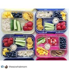 Summer days are busy days. Best to prepare those healthy lunches or snacks in a Yumbox to take with you on your summer outings. Yumbox is not only for packed school lunches!  #packedlunch