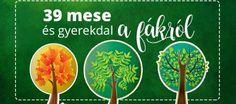 39 kedves mese, gyerekdal és ismeretterjesztő videó a fákról Earth Day Activities, Green Day, Drawing For Kids, School, Children, Diy, Creative, Young Children, Boys