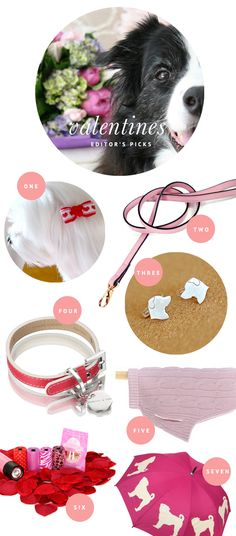 Pink & Red Valentines Goodies for every pup! <3