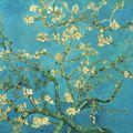 Philadelphia Museum of Art's Van Gogh was praised in the Wall Street Journal