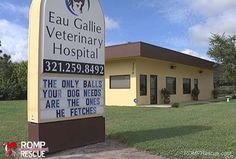 31 hysterical veterinarian signs that will have you dying of laughter