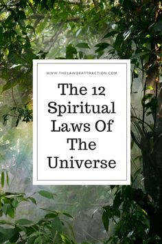 When you think about spiritual laws of the universe, your mind may go straight to the Law of Attraction. However, it turns out that there is a whole network of interconnected laws that can impact on every aspect of your life. Even better, although these laws can be used to assist in Law of Attraction work, you don't need to be working on any particular manifestation goal to benefit here.