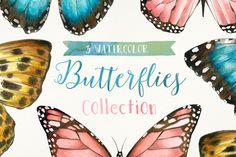 3 Watercolor Butterflies by Bianca Pozzi on Creative Market