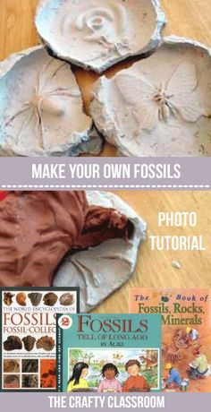 Make your own fossils with plaster of paris and children's toys. These geology crafts are great for teaching children or homeschooling with! Lots of fun free educational crafts and activities! Dinosaurs Preschool, Dinosaur Activities, Science Activities, Science Projects, Projects For Kids, Science Experiments, Volcano Projects, Steam Activities, 4th Grade Science