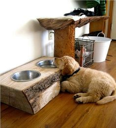 Pallets Made Dog Bowls: Pallets made dog bowl stand would look like just a table to serve food to your pets. Dog bowls can be prepared in different sizes according to your requirements. This can surely be a sweet gift for your beloved pets. Dog Bowl Stand, Dog Rooms, Dog Feeder, Pet Home, Pet Beds, Diy Stuffed Animals, Dog Supplies, Dog Food Recipes, Your Pet