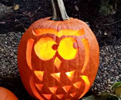 free-owl-pumpkin-template-for-halloween