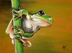 frog paintings - Google Search