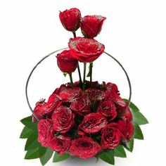 Ferns N Petals present a huge range of Propose day gifts. Choose a unique gift for your lover from FNP and send to anywhere in India with free shipping. http://www.fnp.com/valentine/valentine_propose_day.html