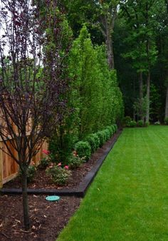 Backyard Landscaping Ideas - Backyard privacy fence landscaping ideas on a budget Privacy Fence Landscaping, Large Backyard Landscaping, Big Backyard, Landscaping Software, Landscaping Design, Modern Landscaping, Landscaping Jobs, Privacy Fences, Landscaping Borders