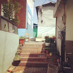 .@iamlja | #골목 #korea #alley | Webstagram