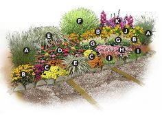 plans for butterfly gardens | Send to a Friend Print