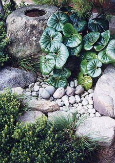 Tsukubai mpkeane Awanosato Park - jardin Japonais - bassin
