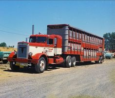 Peterbilt Cattle Hauler by gdmey, via Flickr