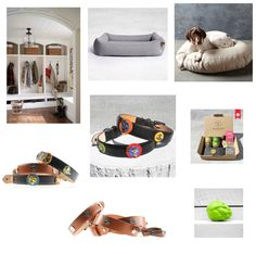 The most amazing selection of dog collars, dog beds, dog toys, dog treats and boot room / mud room hanging space for leads. Most of which all from www.houndworthy.com. Probably the best site for dog accessories in the world.