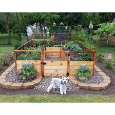 8 ft x 12 ft Western Red Cedar Raised Garden Bed garden beds Garden Design Plans, Backyard Garden Design, Backyard Landscaping, Home Garden Design, Diy Garden Bed, Fence Design, Backyard Ideas, Home Vegetable Garden Design, Stone Backyard