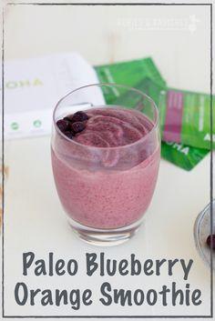 Paleo Recipes – Menus for Life Orange Smoothie, Apple Smoothies, Smoothie Bowl, Healthy Smoothies, Smoothie Recipes, Green Smoothies, Paleo Menu Plan, Paleo Diet Plan, Paleo Food