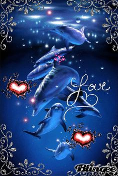 Dolphins Animated Pictures for Sharing Dolphin Images, Dolphin Photos, Dolphin Painting, Dolphin Art, Dolphins Animal, Baby Dolphins, Water Animals, Animals And Pets, Strange Animals