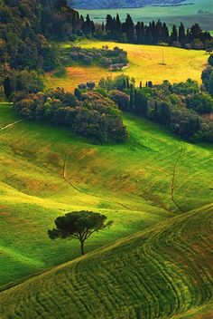 Tuscany Rural Landscape - Italy Photograph at BetterPhoto.com