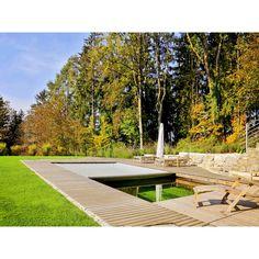 Living Pool, Sidewalk, Swiming Pool, Water Pond, Swimming, Water, Timber Wood, Side Walkway, Walkway