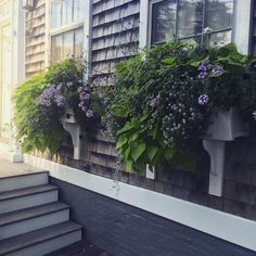 Window #flowerboxes are like jewelry for your #home. #DIY them, and it's an easy way to boost your #curbappeal on a budget.