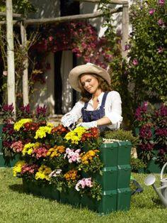 Garten im Garten: Das minigarten-System eignet sich für drinen und draußen