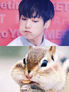 Read 79 from the story Memes de BTS 2 by (°Fxxk It°) with reads. Jung Kook, Bts Funny Videos, Bts Memes Hilarious, Jungkook Cute, Kookie Bts, Jungkook Fanart, Jimin, Jikook, Bts Tweet